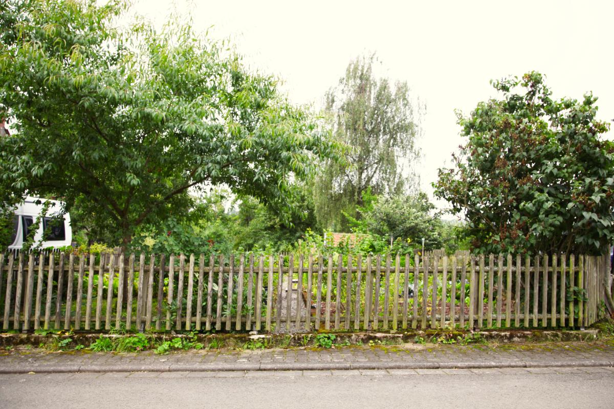 Gartenzaun an der Honiggasse